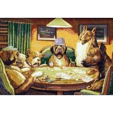 Покер 72х53