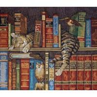 Библиотекарь 60х52